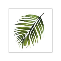 Canvas Greenery Black Palm kép, 32 x 32 cm - Styler
